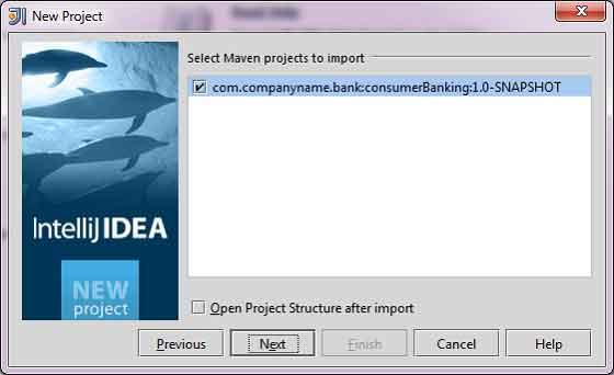 New Project in IntelliJ IDEA, step 4.