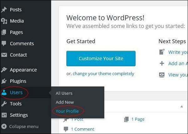 wordpress教程之 WordPress 个人档案
